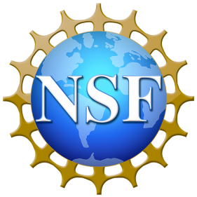 NSF Research Experiences for Undergraduates (REU)